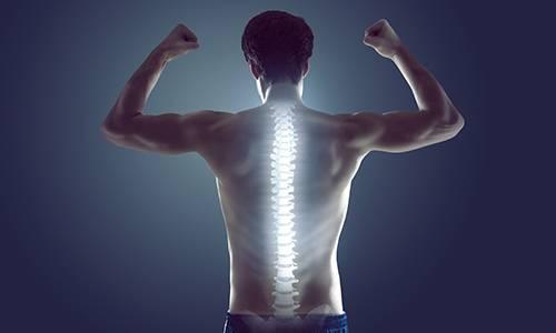 Hütthaler Fittness Sport Rückenfit